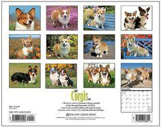 Just Corgis 2015 Calendar