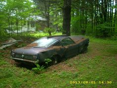1966 Ford Mustang Fastback, really sad..this one is gone..maybe a few parts, that's all.
