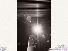 Stephanie   Italo : Orlando Florida Wedding