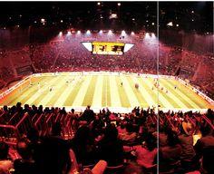 Indoor Soccer, Concert, Concerts