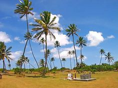 The Cocos Island Cemetery