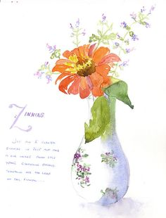 watercolor of zinnia by loveitaly, via Flickr