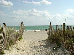 Beach, Path, Picket Fence, Sand