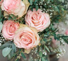 Hochzeitsfotos - Erinnerungen für die Ewigkeit Portrait, Rose, Flowers, Plants, Memories, Pink, Headshot Photography, Portrait Paintings, Plant