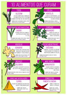 Veja como algumas ervas e condimentos podem ajudar no combate a algumas doenças do dia a dia. Se os sintomas persistirem, visite um especialista.