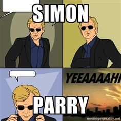 Simon Parry David Caruso Meme