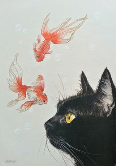 Goldfish and black cat | favorite artists purchase and sales site #beautifulcat