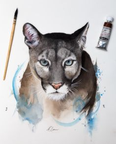 This is an original watercolour and pencil painting of a Puma. Painted using high-quality Schmincke watercolours on Saunders Waterford watercolour paper. Animal Paintings, Animal Drawings, Pencil Drawings, Art Drawings, Watercolor Animals, Watercolor Paintings, Watercolour, Pumas Animal, Pencil Painting