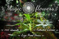 ✿Magic Flowers✿ Extended License by WonderMe on Creative Market