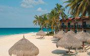 Divi Divi, Aruba