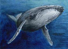 ACEO Original Humpback Whale marine animals endangered ocean sea under water #Impressionism