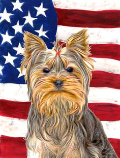 USA American Flag with Yorkie/Yorkshire Terrier House Vertical Flag
