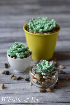 Crochet Succulents - Free crochet pattern for these easy-care succulents.