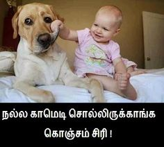 Baby Funny Ccomment