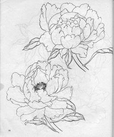 (32) 阳光乐乐采集到学画花(725图)_花瓣 | Drawing Flowers 2 / Tutorials / Рисуем цветы 2 | Pinterest