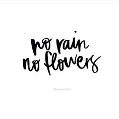 No rain no flowers No mud no lotus