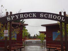 Bird School Project: Rainy Day at Spy Rock Elementary!