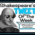 """Bring Shakespeare into the 21st Century with this creative and interactive bulletin board display. Create a """"Shakespeare's Tweet of The Week"""" boar..."""