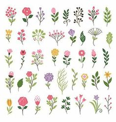 floral collection with leaves and flowers vector 4382598 - by Lenlis on., Colorful floral collection with leaves and flowers vector 4382598 - by Lenlis on. Art Floral, Floral Flowers, Colorful Flowers, Seasonal Flowers, Simple Flowers To Draw, Diy Flowers, Vintage Floral, Watercolor Flowers, Watercolor Art