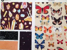 "Lizzy House's ""Natural History"" by Andover Fabrics at Fall Quilt Market 2014"