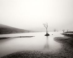 Fernando Manso. Convierte el arte en agua Fine Art Photography, Country Roads, River, Landscape, Photographers, Outdoor, Water Art, Photos, Scenery