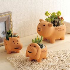 Macetas animales kawaii | Todokawaii Flower Pots, Flowers, Piggy Bank, Home Accessories, Cactus, Planter Pots, Diy, Plants, Interior