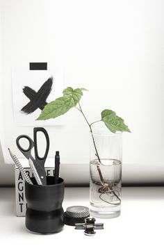office details, black and white with a touch of green
