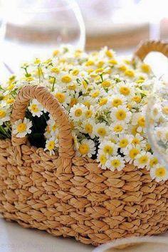 straw basket of yellow and white wild daisy flowers Happy Flowers, My Flower, Beautiful Flowers, Hello Beautiful, Deco Floral, Arte Floral, Daisy Love, Flower Basket, Mellow Yellow