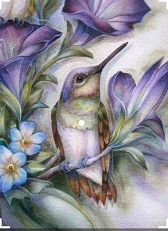Hummingbird Pictures, Hummingbird Painting, Beautiful Birds, Painted Rocks, Illustrators, Watercolor Art, Art Drawings, Sketches, Art Prints