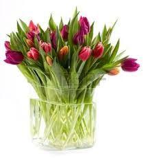 Afbeeldingsresultaat voor tulpen in vaas