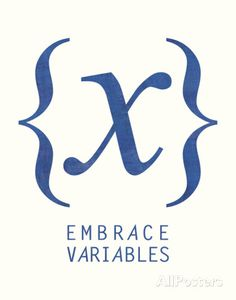 Embrace Variables Prints by Urban Cricket at AllPosters.com