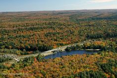 Fall aerial images of Algonquin Park's fall colour. www.algonquinpark.on.ca
