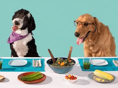 A quick, simple guide to Cooking Nutritious meals and Treats for your furry kids!