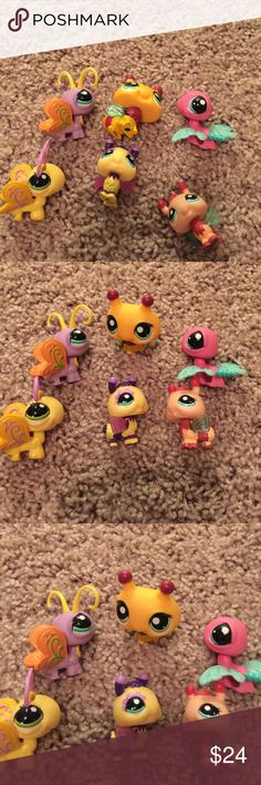 6 littlest Pet Shops birds 6 littlest Pet Shops birds $5.00 each or $24.00 for all of them.. comment me if you have any questions Littliest Pet Shop  Accessories