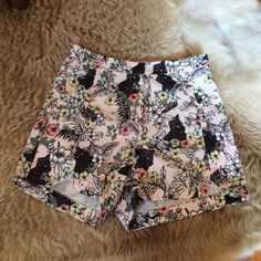 High waisted cat shorts NWOT. size small. very high waisted! perfect condition Shorts