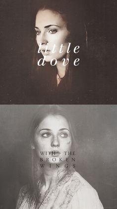 Sansa Stark: Little dove with the broken wings. #got #asoiaf
