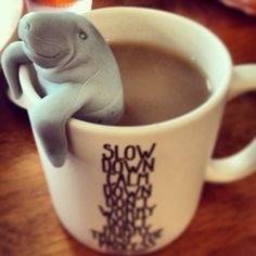 Ahhh.  There's nothing like a sea cow to make tea time a little more comforting!  Everybody's favorite Floridian wants to brew you a nice cup of tea and share a slow, calm moment.  Our ManaTea Tea Inf