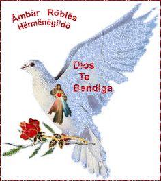 Ámbar Roblës Hërmnëgildö.. Imagenes de Amistad, Gifs, Videos y Reflexiones: Imagenes (Gifs)  Amistad, Videos y Reflexiones
