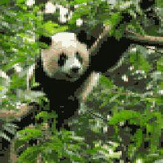 Werdet Teil des Pandas! Zeigt das ihr euch für die Natur einsetzt und gewinnt tolle Preise: http://www.wwf.de/50-jahre-wwf-deutschland/dein-panda-bild via @WWF Deutschland