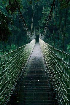 Sneekin bridge