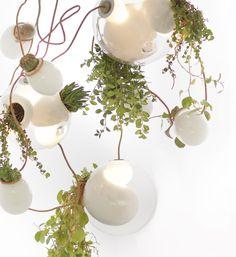 planter chandelier by omer arbel