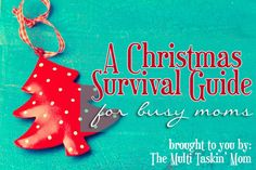 A Christmas Surivival Guide