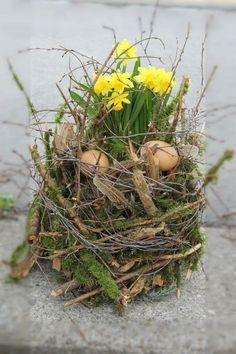 Osterdeko mit Moosästen mit Narzissenpflanze