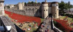 888,246 blood red poppies flow from Tower of London to commemorate each British and Colonial soldier who lost their life during World War I (4/10)