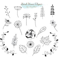 Hand Drawn clipart doodle clipart Instant Download PNG by HandMek