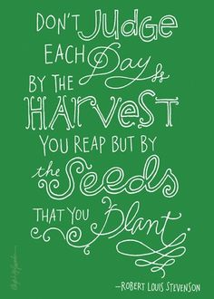 Don't judge each day by the HARVEST you reap but by the Seeds that you Plant .