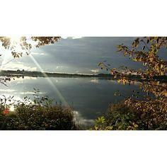 #осень#пейзаж#природароссии#солнце#закат#вечер#озеро#autumn#sun#naturerussia#sunset#sunsetrussia#landscape#suksy#luonto#aurinko#auringonlasku#maisema#ilta#järvi#tweegram#photooftheday#love#beautifulday by tanya_zvetkova