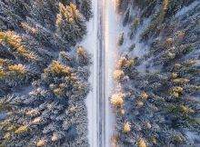 Don't let weather stop you from an unforgettable road trip! Learn exactly how to survive a winter road trip with these useful tips. Winter Forest, Winter Road, Snowy Forest, Forest Road, Pvt Canada, 8k Ultra Hd, Beautiful Winter Scenes, Beautiful Scenery, Beautiful Birds