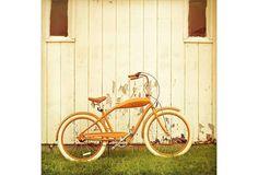 Orange Bicycle - Carl Christensen