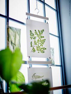 Så ett frö för fantasin! | Livet Hemma – IKEA